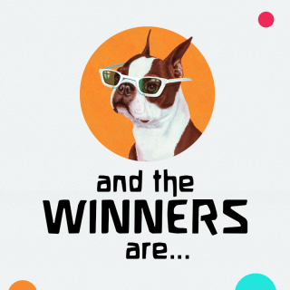 Pets Design Contest – The Winners