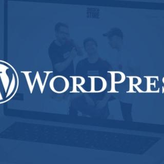 WordPress Plugin Update: More Freedom in Shop Integration