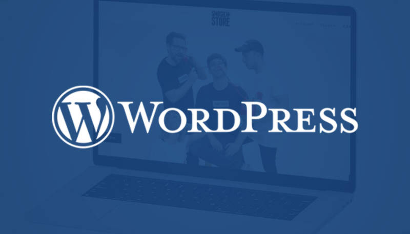 WordPress Plugin Update: More Freedom in Shop Integration