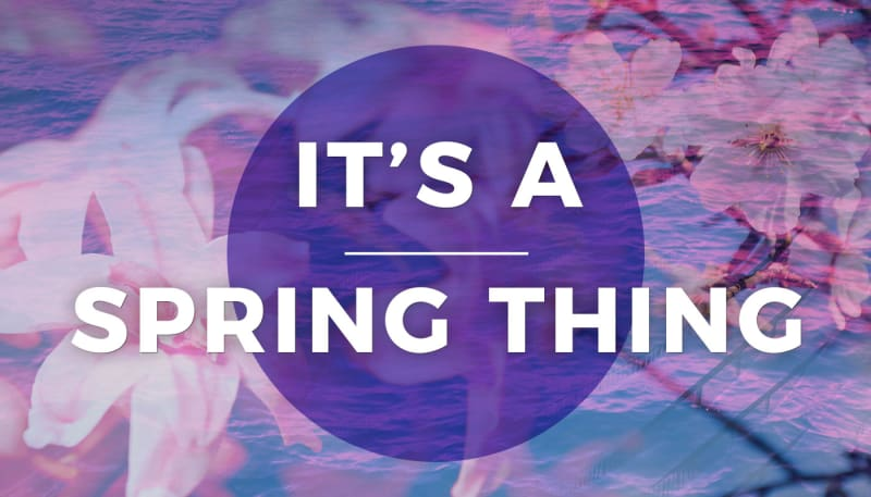 Spring Trends 2017